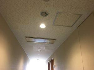 天井張替完了