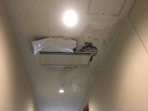 天井漏水部